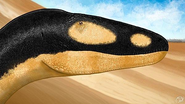 600px-Alectrosaurus_portrait_by_PaleoGeek
