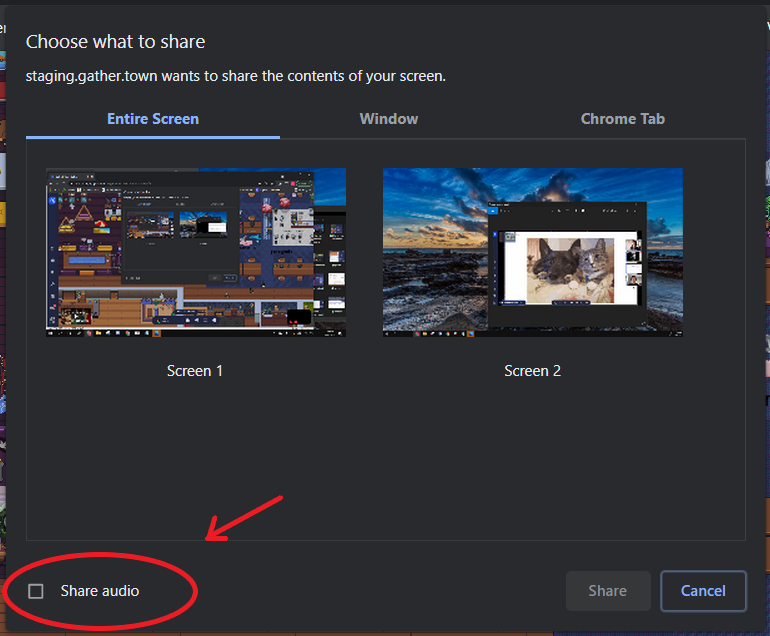 An image of the Chrome browser share screen prompt with an arrow pointing at a circle that encompasses the Share Audio option