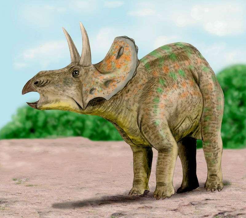Nedoceratops_BW