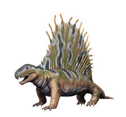 Dimetrodon_NT2_small