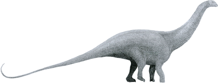 440px-Brontosaurus_by_Tom_Parker