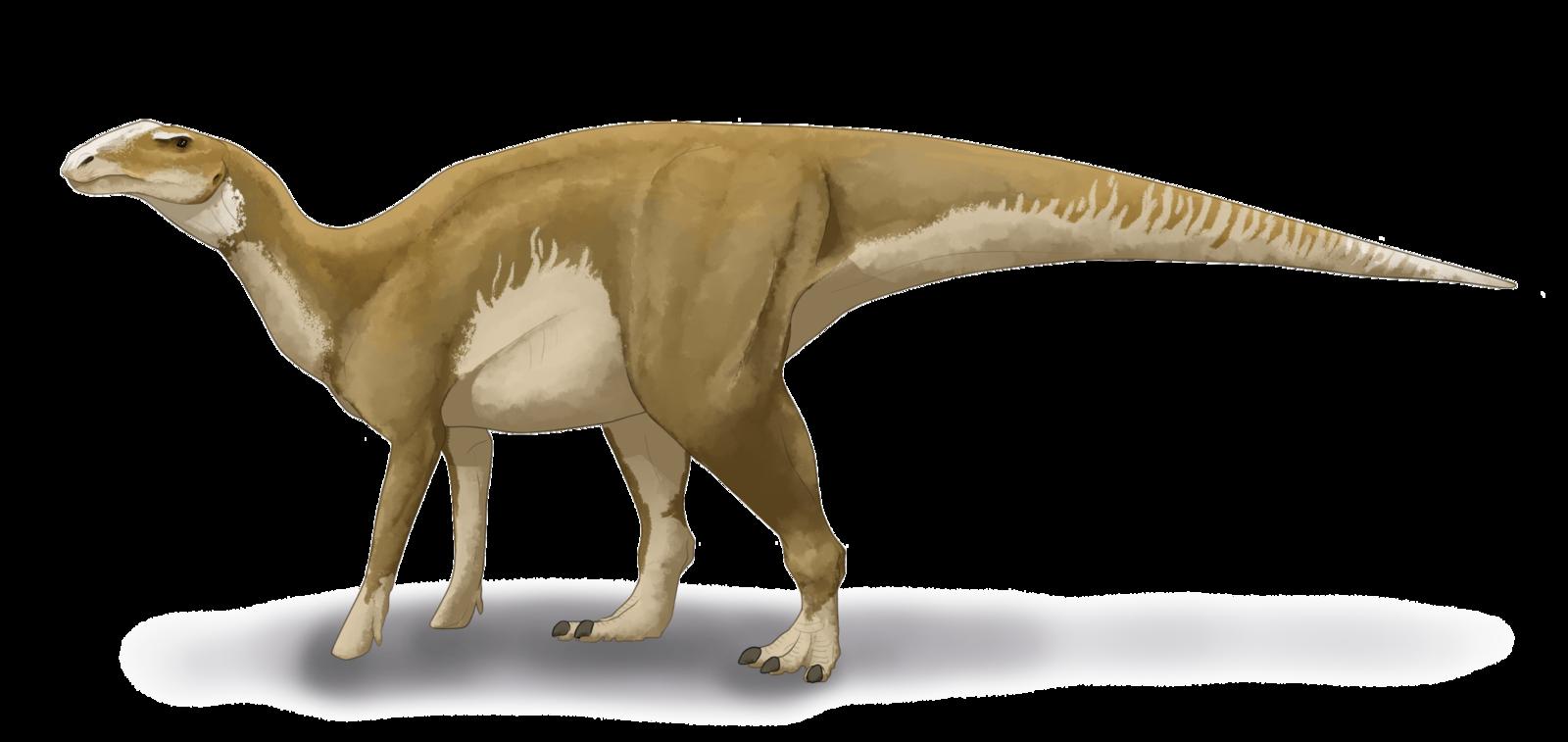 1600px-Hadrosaurus_foulkii_restoration